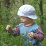 <b>Правила применения фитотерапии для детей</b>