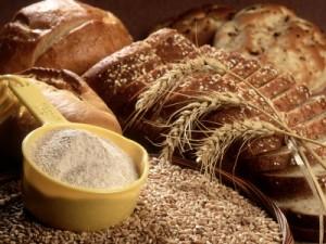использование пшеницы_фото