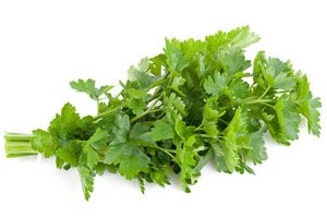 http://yalechusama.ru/wp-content/uploads/2011/06/parsley-lycopene-lg.jpg