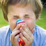 <b>Аллергия у детей</b>