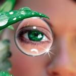 <b>Лечение сухости глаз</b>