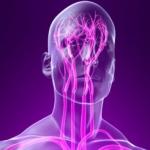Как диагностируется нейроциркуляторная дистония