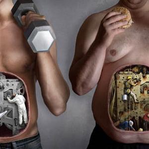 Вернемся к метаболизму