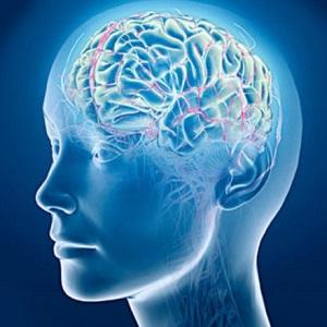 Мозг может постареть из-за ожирения