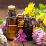 Эфирные масла защищают от воздействия окружающей среды