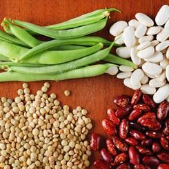 Фитоэстрогены в продуктах