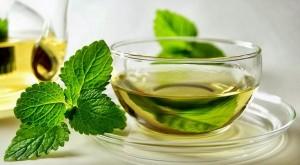 Особенности состава масла зеленого чая