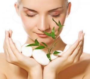 Свойства и действие на кожу масла из зеленого чая