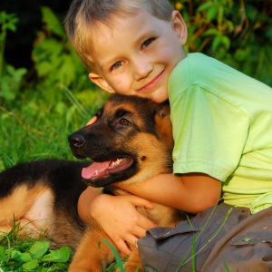 Собаки снижают риск аллергии у детей