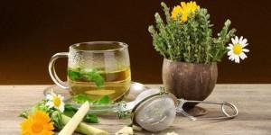 Травяные средства для лечения нервов