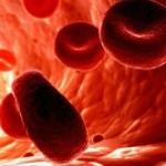 <b>Лечение анемии народными средствами в домашних условиях</b>